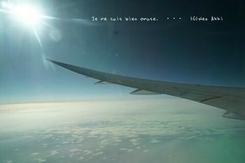 そしてシャルル・ド・ゴール空港まで(12).jpg