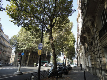 オルセー美術館(3).jpg