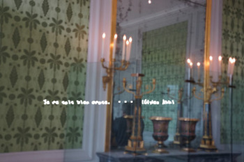 フォンテーヌブロー宮殿(90).jpg