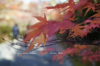 マイルで行く京都旅Next 2020(113).jpg