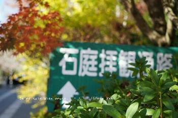 マイルで行く京都旅Next 2020(110).jpg