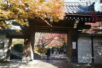 マイルで行く京都旅Next 2020(111).jpg