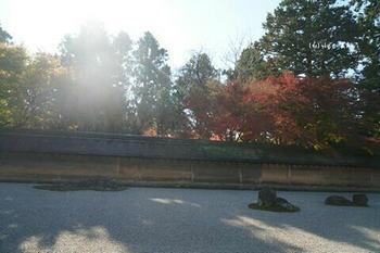 マイルで行く京都旅Next 2020(118).jpg