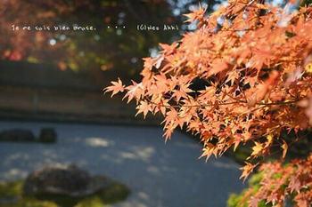 マイルで行く京都旅Next 2020(129).jpg