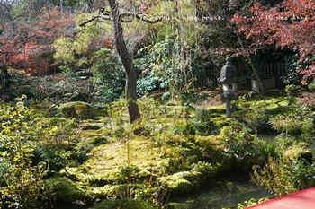 マイルで行く京都旅Next 2020(151).jpg
