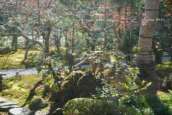 マイルで行く京都旅Next 2020(155).jpg