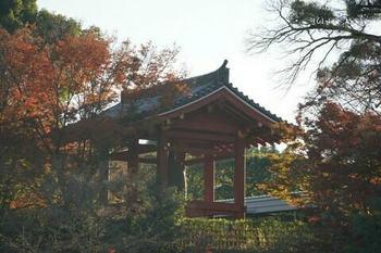マイルで行く京都旅Next 2020(193).jpg