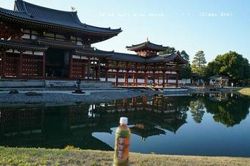マイルで行く京都旅Next 2020(198).jpg