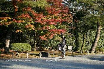 マイルで行く京都旅Next 2020(199).jpg