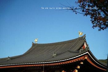 マイルで行く京都旅Next 2020(202).jpg