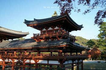 マイルで行く京都旅Next 2020(203).jpg