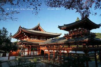 マイルで行く京都旅Next 2020(205).jpg