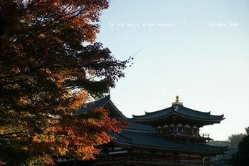 マイルで行く京都旅Next 2020(208).jpg