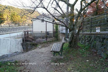 マイルで行く京都旅Next 2020(212).jpg