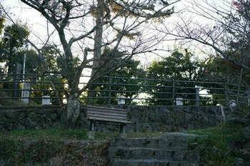 マイルで行く京都旅Next 2020(213).jpg