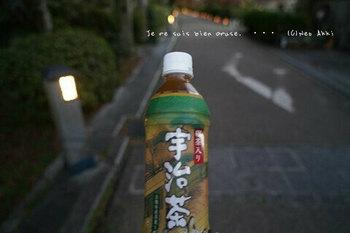 マイルで行く京都旅Next 2020(223).jpg