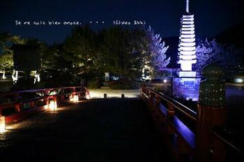 マイルで行く京都旅Next 2020(229).jpg