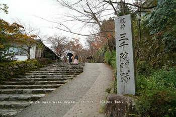マイルで行く京都旅Next 2020(282).jpg