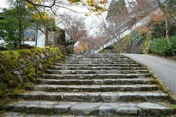 マイルで行く京都旅Next 2020(283).jpg