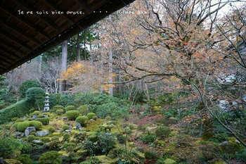 マイルで行く京都旅Next 2020(289).jpg