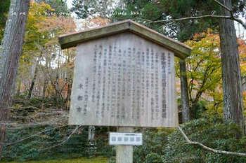 マイルで行く京都旅Next 2020(294).jpg