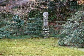 マイルで行く京都旅Next 2020(295).jpg