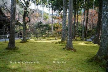 マイルで行く京都旅Next 2020(304).jpg