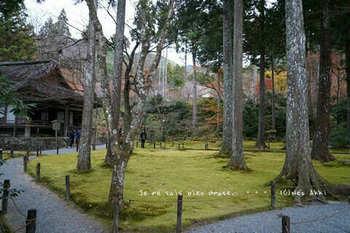 マイルで行く京都旅Next 2020(306).jpg