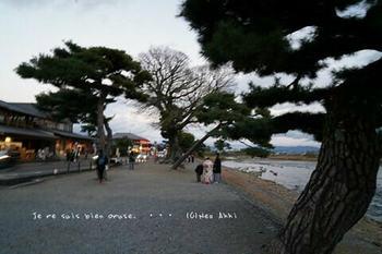 マイルで行く京都旅Next 2020(359).jpg