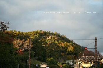 マイルで行く京都旅Next 2020(38).jpg