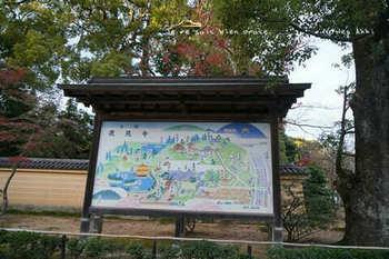 マイルで行く京都旅Next 2020(39).jpg
