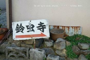 マイルで行く京都旅Next 2020(402).jpg