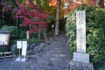 マイルで行く京都旅Next 2020(403).jpg