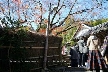 マイルで行く京都旅Next 2020(404).jpg