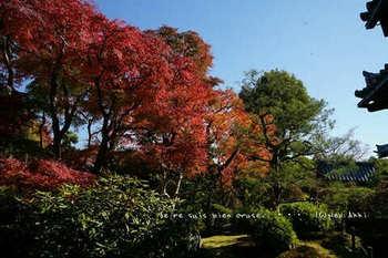 マイルで行く京都旅Next 2020(410).jpg