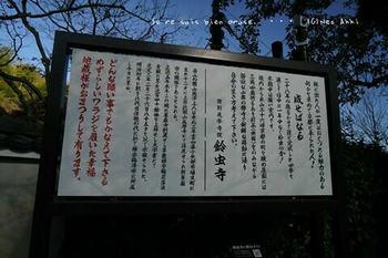マイルで行く京都旅Next 2020(418).jpg