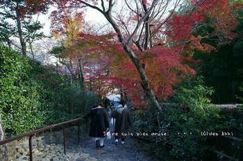 マイルで行く京都旅Next 2020(419).jpg