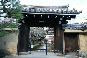 マイルで行く京都旅Next 2020(438).jpg