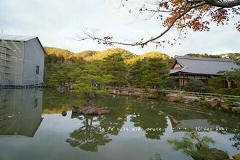 マイルで行く京都旅Next 2020(44).jpg