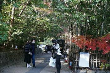 マイルで行く京都旅Next 2020(452).jpg