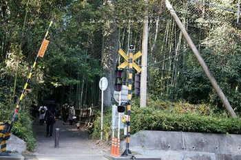 マイルで行く京都旅Next 2020(453).jpg