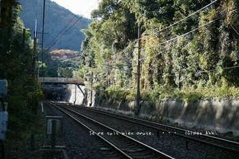 マイルで行く京都旅Next 2020(457).jpg