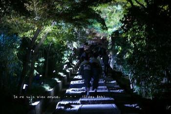 マイルで行く京都旅Next 2020(60).jpg