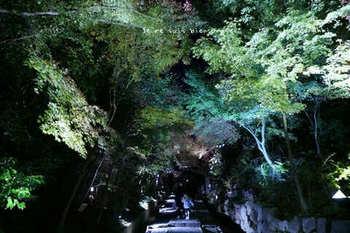 マイルで行く京都旅Next 2020(61).jpg