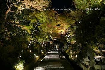 マイルで行く京都旅Next 2020(62).jpg