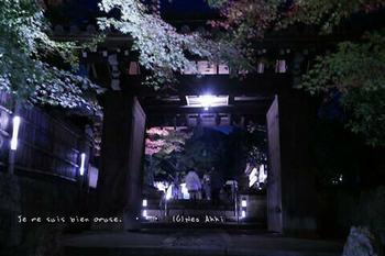 マイルで行く京都旅Next 2020(63).jpg
