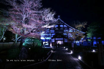 マイルで行く京都旅Next 2020(64).jpg