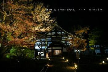 マイルで行く京都旅Next 2020(65).jpg