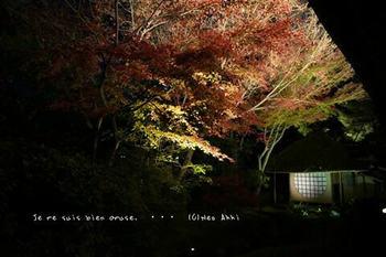 マイルで行く京都旅Next 2020(67).jpg