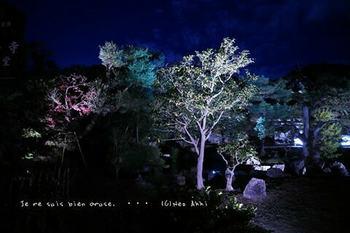 マイルで行く京都旅Next 2020(70).jpg
